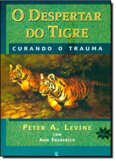 Picture of DESPERTAR DO TIGRE, O - CURANDO O TRAUMA