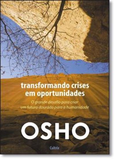 Picture of TRANSFORMANDO CRISES EM OPORTUNIDADES