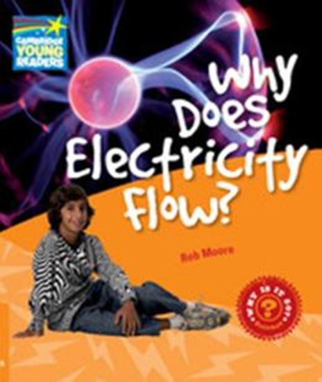 Picture of WHY DOES ELECTRICITY FLOW? - LEVEL 6