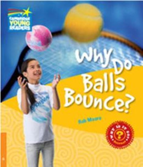 Picture of WHY DO BALLS BOUNCE? - LEVEL 6