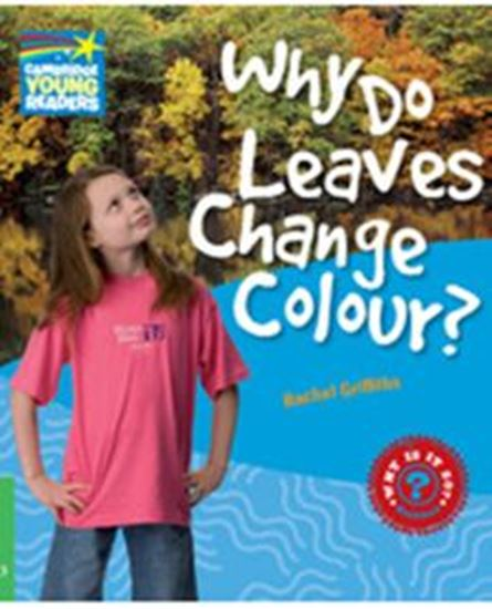 Picture of WHY DO LEAVES CHANGE COLOUR? - LEVEL 3