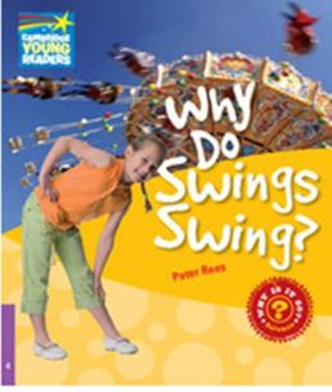 Picture of WHY DO SWINGS SWING?