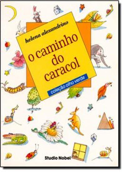 Picture of CAMINHO DO CARACOL, O