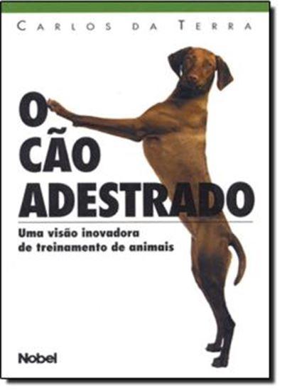 Picture of CAO ADESTRADO, O